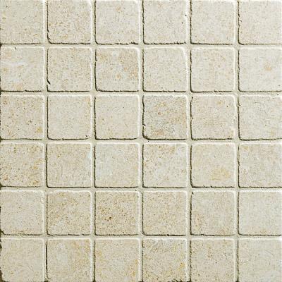 Seashell Tumbled 30,5x30,5 2x2 Limestone Mozaik