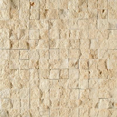 Seashell Rock Face 32x32 2,3x2,3 Limestone Mozaik