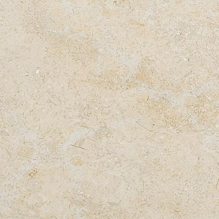 Seashell Honed Limestone Fayans