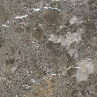 arctic-gray1